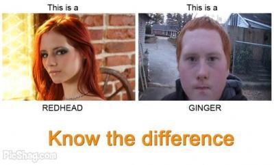 Redhead Vs. Ginger