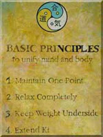 Basic principles of Aikido