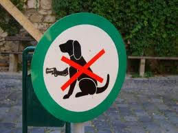 No dogs with guns allowed