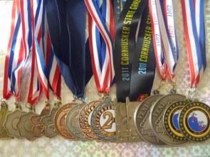 My Jiu-Jitsu medals