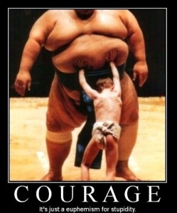 Courage: It's just a euphemism for stupidity.