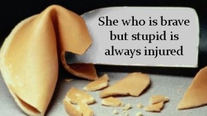 She who is brave but stupid is always injured.