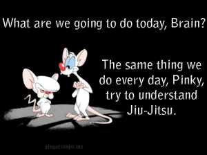 What are we going to do today, Brain? The same thing we do every day, Pinky, try to understand Jiu-Jitsu.