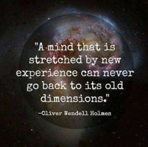 """A mind that is stretched by new experience can never go back to it's old dimensions."" -Oliver Wendell Holmes"