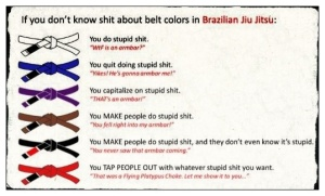 You don't know shit about BJJ!