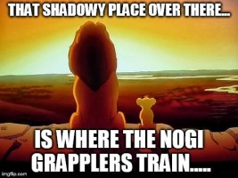 That shadowy place over there is where the no-gi grapplers train...