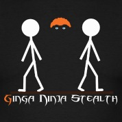 ginga ninja stealth