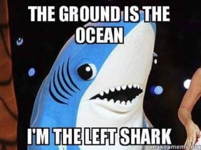 The ground is the ocean, I'm the left shark.