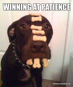 Winning at patience