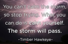 """""""You can't calm the storm, so stop trying. What you can do is calm yourself. The storm will pass."""" -Timber Hawkeye"""