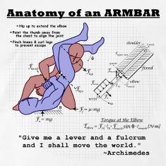 anatomy of an armbar