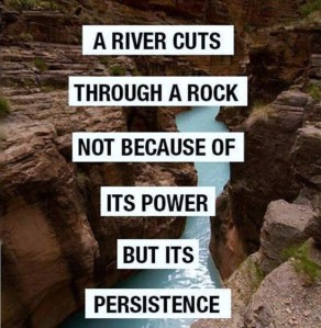A river cuts through a rock not because of it's power, but it's persistence.