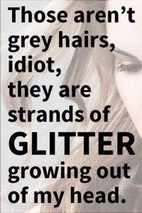 Those aren't grey hairs, idiot, they are strands of glitter growing out of my head.
