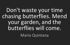 """Don't waste your time chasing butterflies. Mend your garden, and the butterflies will come."" - Mario Quintana"