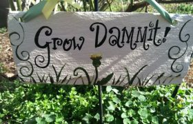 Grow, dammit!