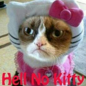 Hell No Kitty