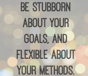 Be stubborn about your goals, and flexible about your methods.